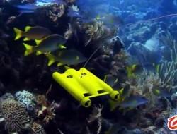 水下无人机将是一片蓝海