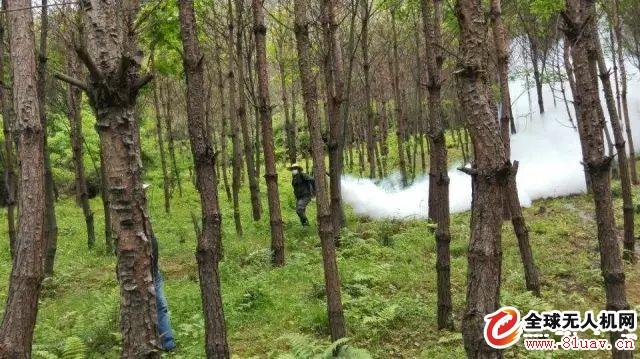 飞马无人机在林业管理中的应用解决方案