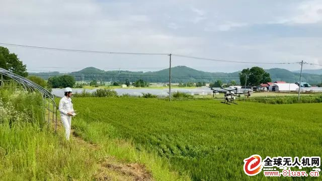 大疆无人机助力日本农业机械化发展