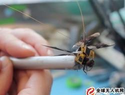 """""""蜻蜓眼""""受控生物无人机取得重要进展"""