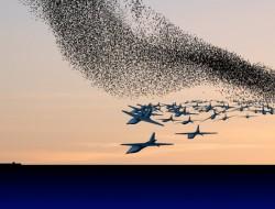 无人机蜂群技术如何改变城市战争