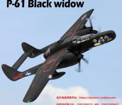 固定翼无人机Dynam P-61