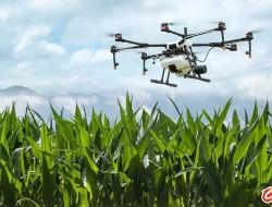 大疆农业获得国家植保无人机浙江、安徽试点补贴