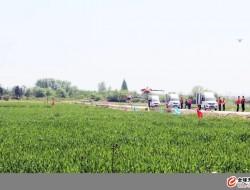 朝农农业无人机飞防 天神助力农业智能化