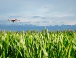 极飞科技:新的一年,继续为全球农业创造改变