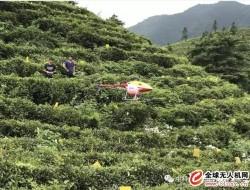 无人直升机在农业上的独特技术优势